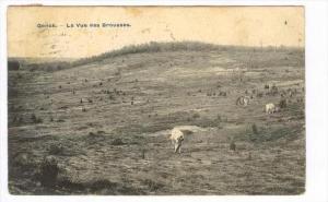 La Vue Des Brousses, Genck, Brussels, Belgium, PU-1908