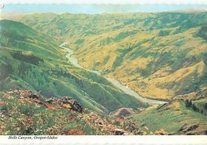 Rigging Idaho Hells Canyon Snake River Americas Deepest Canyon  Postcard  # 8058