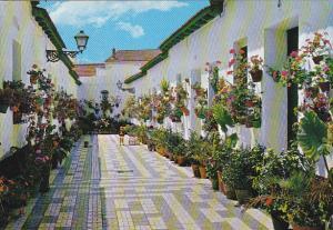 Spain Malaga Calle Blas Palomo