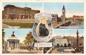 Good Luck from London Black Cat, Trafalgar Square Big Ben Bridge Palace Guards