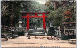 Vintage NARA, JAPAN Postcard Second Torii at Kasuga Shrine Red Gate & Deer
