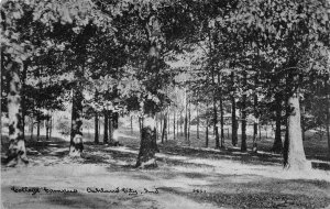 F60/ Oakland City Indiana Postcard 1911 College Campus Trees