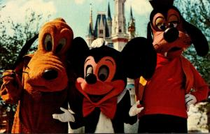 Florida Walt Disney World Mickey Mouse Pluto and Goofy