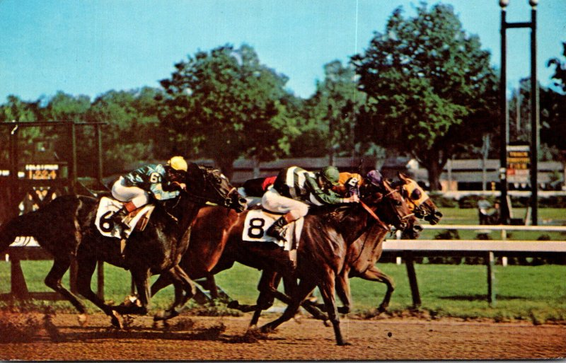 New York Saratoga Race Track Horses Driving To The Finish