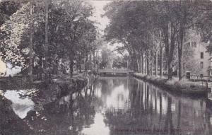 Trees, Scene on the River Near Residential Area, Albion, Michigan, 00-10´s