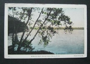 A Beauty Spot Beaver Lake Derry NH 1950 Frank Swallow WB