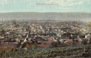 Dansville New York Birdseye View Of City Antique Postcard K69452