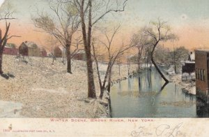 NEW YORK CITY , 1901-07 ; BRONX River in Winter