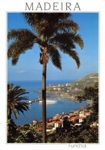 Postcard MADEIRA, Funchal, Western View #888