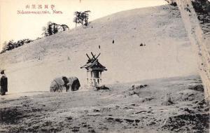 11164 Nikasa-mountain, Nara