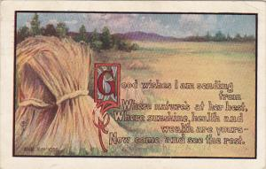 Fred Cavally Colorado Good Wishes I am Sending From 1911