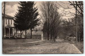 Postcard NY Sidney Center c1910 View Depot Street Looking North Horse Buggy R37