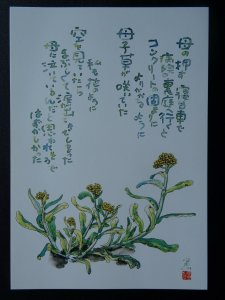 COTTONWEED Paintings Poems by Japanese Disabled Artist Tomihiro Hoshino PC