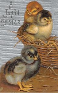 Joyful Easter Baby Chicks In Basket Antique Postcard K30865