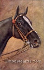 Artist Signed George Rankin Horse Postcard Postcards  George Rankin