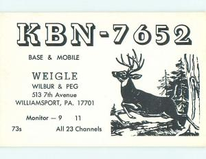 Deer - QSL CB HAM RADIO CARD Williamsport Pennsylvania PA t9724
