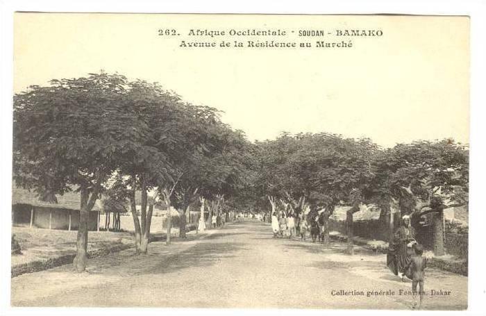 Afrique Occidentale- Soudan, Avenue De La Residence Au Marche, Bamako, Mali, ...