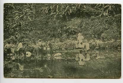 Jamaica Native Washer Women Early Postcard
