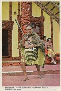 Maori Warrior Challenge Roturua Vintage New Zealand Postcard