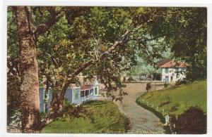 Cottages & Hotel The Geysers Sonoma County California 1910c postcard