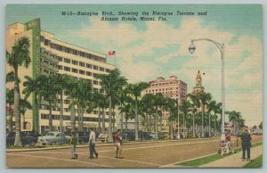 Miami Florida~Biscayne Boulevard~Biscayne Terrace~Alcazar Hotel~Vintage Postcard