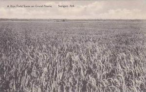 Arkansas Stuttgart Rice Field Scene on Grand Prairie Albertype