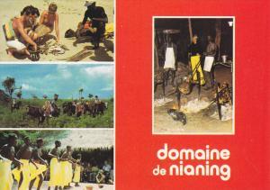 domaine de nianing , SENEGAL, 50-70s