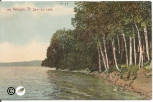 Morgan Vt. Seymour Lake 1910 Vintage Postcard Antique Postcard Old Postcard 100