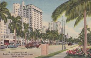 Florida Miami Biscayne Boulevard Looking North From Flagler Street 1956 Curteich