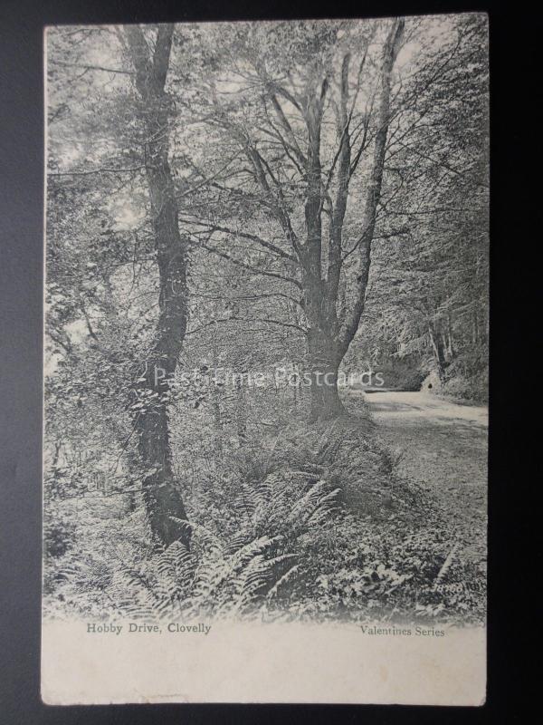 Devon CLOVELLY Hobby Drive c1903 Valentine J8766
