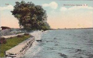 New York Geneva Seneca Lake Shoreline