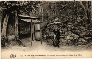 CPA Foret de FONTAINEBLEAU - Fontaine du Mont Chauvet (166787)