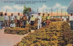 Florida Tarpon Springs Scene At The Sponge Exchange Curteich