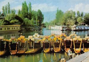 India Shikaras on Dal Lake (Awaiting Visitors) Boats House