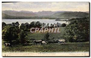 Postcard Old Windermere And Langdude Pikes Hotel Lowwood With Cows
