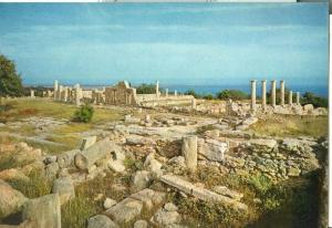 Cyprus, The Temple of Apollo Hylates, unused Postcard