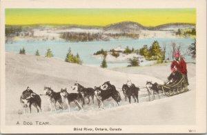 Blind River Ontario Dog Team Sled Unused PECO Postcard F54