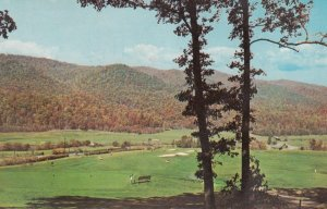 HOT SPRINGS, Virginia, 1969; The Homestead, Green Lower Cascades Golf Course