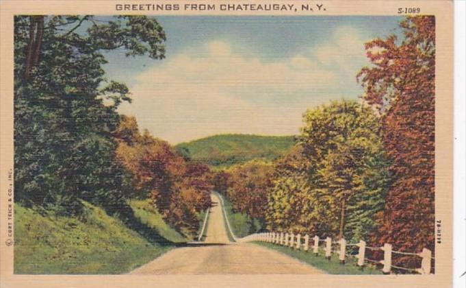New York Greetings From Chateaugay Curteich