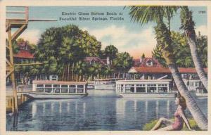 Florida Silver Springs Electric Glass Bottom Boats At Beautiful Silver Spring...