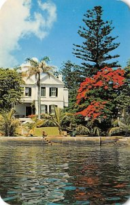 Brilliant Red of the Poinciana Reflected in the Blue Water Bermuda Island 1959