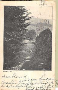 Tyson Vermont Scenic Forest View Antique Postcard K85895
