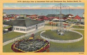 LPS41 Buckroe Beach Virginia Aerial View Amusement Park Chesapeake Bay Postcard