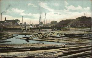 Logging at Ox Bow Conn River Near Holyoke MA c1910 Postcard