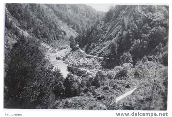 RPPC Buller Gorge, New Zealand  Standard size real photo