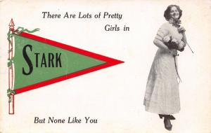 Lots of Pretty Girls in Stark Maine~None Like You~Victorian Lady~1913 Pennant