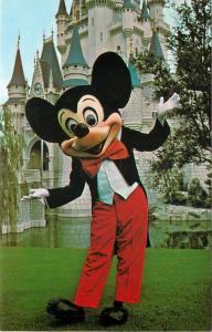Orlando Florida~Walt Disneyworld~Magic Kingdom~Mickey Mouse~Cinderella Castle