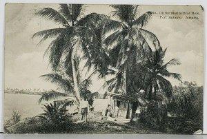 Jamaica On The Road to Blue Hole, Port Antonio 1911 to New York Postcard K1