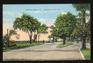 Portland, Maine/ME Postcard, Western Promenade