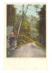 Cold Spring, Dixville Notch, New Hampshire,00-10s